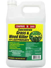 Best Weed Killer Options Available on Amazon