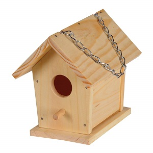 Best Bird House to Buy on Amazon