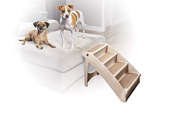 Best Pet Stairs to Buy