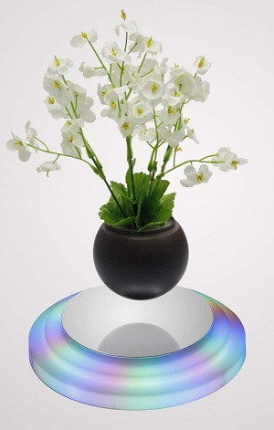 Gorgeous Air Bonsai: Best Levitating Flower Pot Review