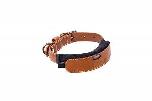 Link AKC Dog Tracking Collar with LED.jpg