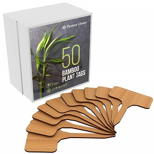 50 Bamboo Plant Labels in Gift Box.jpg
